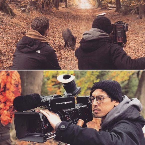 Jagdwelt24.de – Wild Hogs